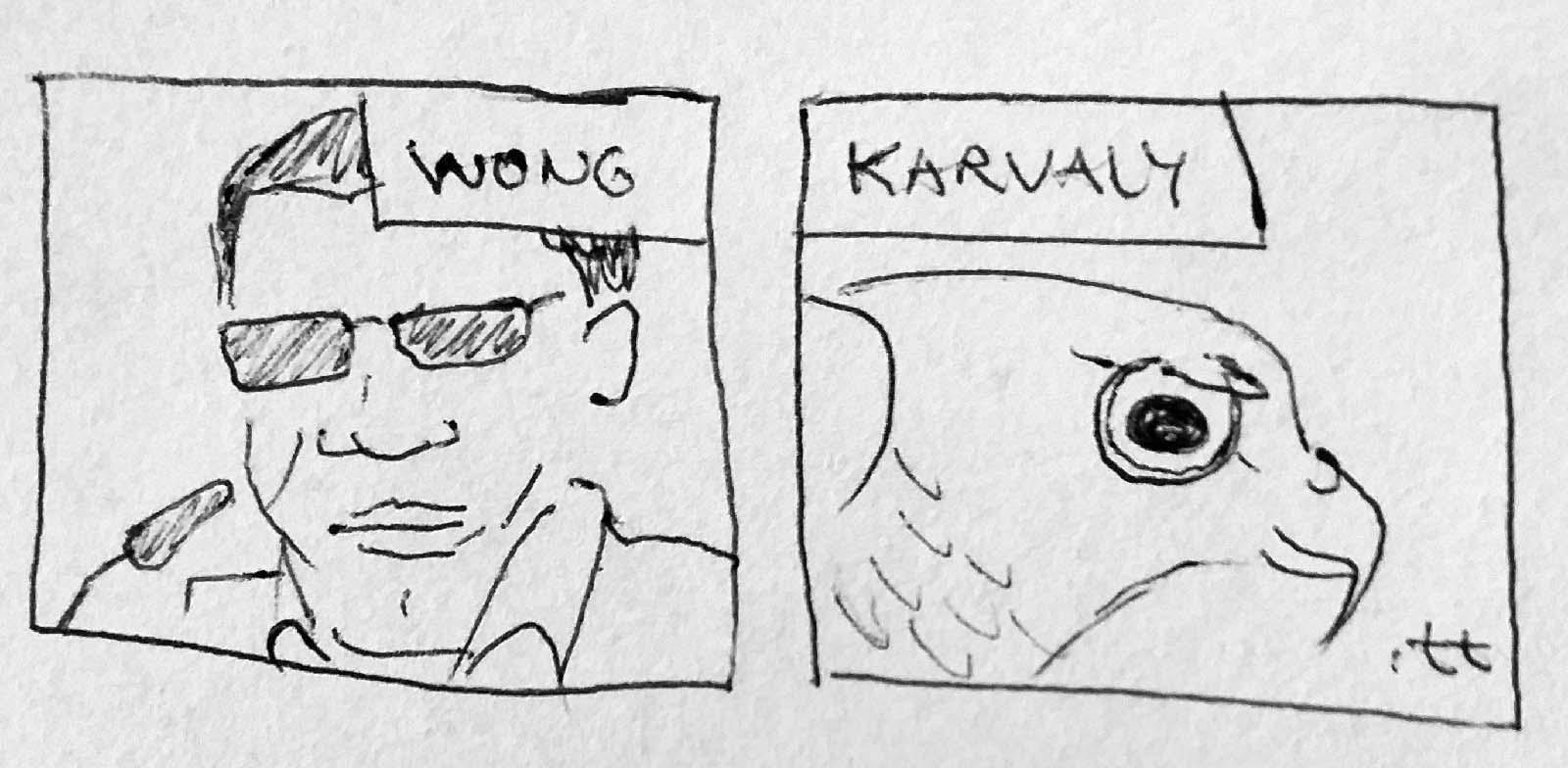 Wong Sparrowhawk