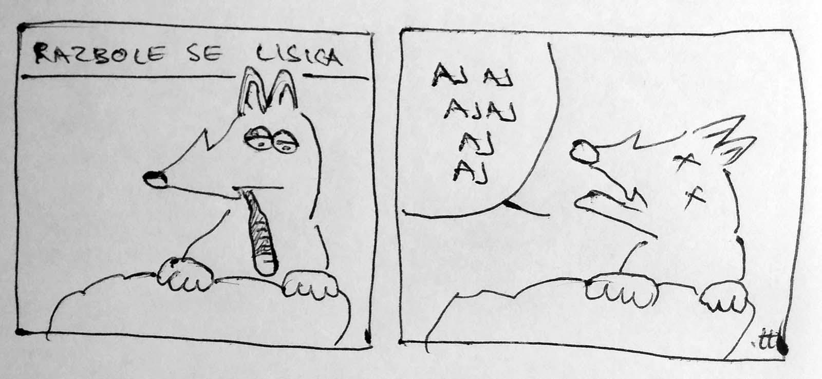 Sick fox